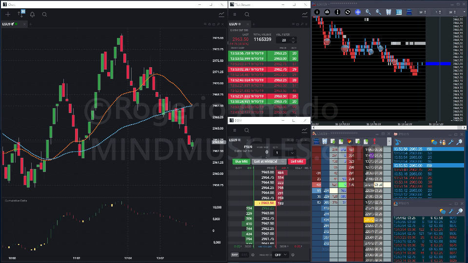 Screen shot showing Order flow information and set up on charts